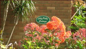 Lillypilly - Accommodation Mount Tamborine