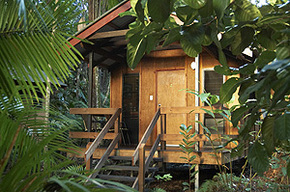 Cape Trib Beach House - Accommodation Mount Tamborine