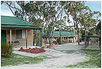 Murray Gardens Motel And Cottages - Accommodation Mount Tamborine