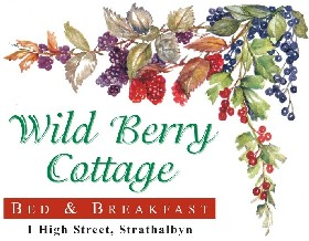 Wild Berry Cottage - Accommodation Mount Tamborine