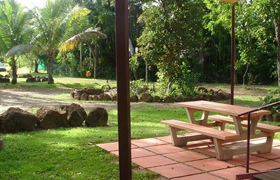 Virginia Heliconia Farm - Accommodation Mount Tamborine