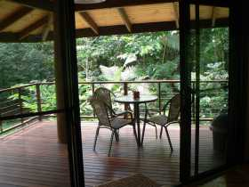 Cape Trib Exotic Fruit Farm Bed and Breakfast - Accommodation Mount Tamborine