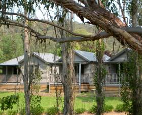 The Homestead Cabins Brogo - Accommodation Mount Tamborine