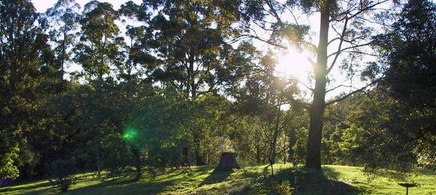 Calurla Chalets and Cottages - Accommodation Mount Tamborine
