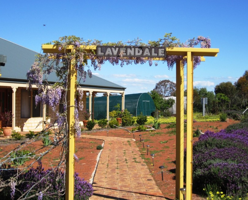 Lavendale Farmstay and Cottages - Accommodation Mount Tamborine