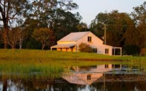 Madigan Vineyard - Accommodation Mount Tamborine