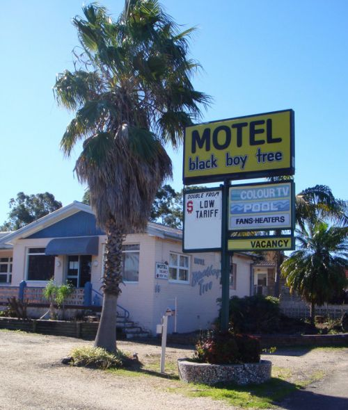 Blackboy Tree Motel - Accommodation Mount Tamborine
