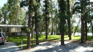 Barham Caravan  Tourist Park - Accommodation Mount Tamborine