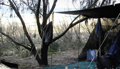 Main Beach Foreshore Camping Grounds - Accommodation Mount Tamborine