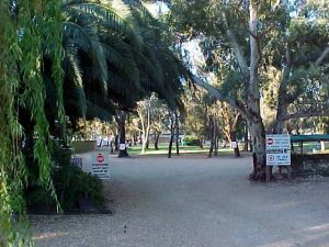 Kingston-On-Murray Caravan Park - Accommodation Mount Tamborine