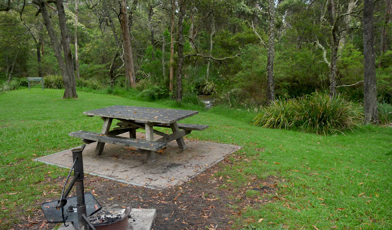 Chaelundi campground - Accommodation Mount Tamborine