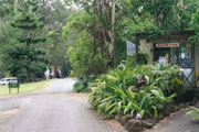 Tamborine Mountain Caravan  Camping - Accommodation Mount Tamborine