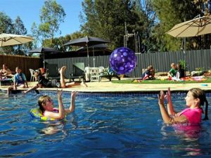 Kingston On Murray Caravan Park - Accommodation Mount Tamborine