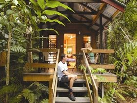 Cape Trib Beach House Retreat - Accommodation Mount Tamborine