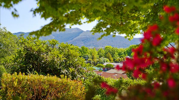 Greatview Holiday Spa Retreat for Couples - Accommodation Mount Tamborine
