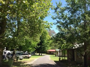 Yackandandah Holiday Park - Accommodation Mount Tamborine