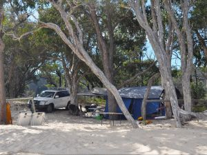 Moreton Island National Park and Recreation Area camping - Accommodation Mount Tamborine