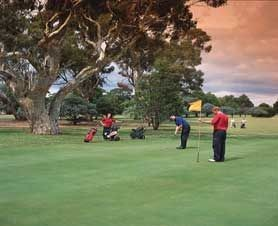 Barham Golf Resort - Accommodation Mount Tamborine