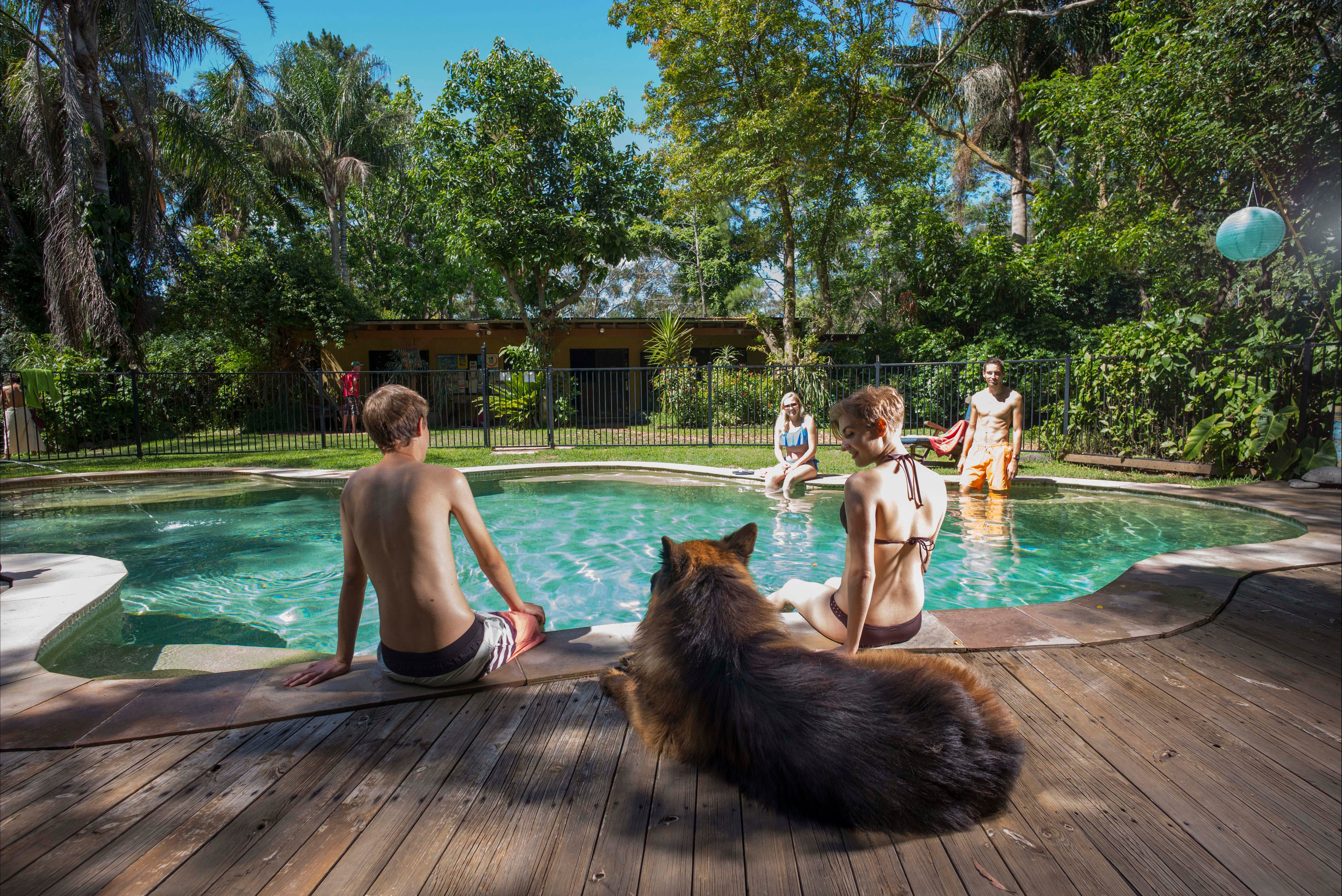 Samurai Beach Bungalows Port Stephens YHA - Accommodation Mount Tamborine