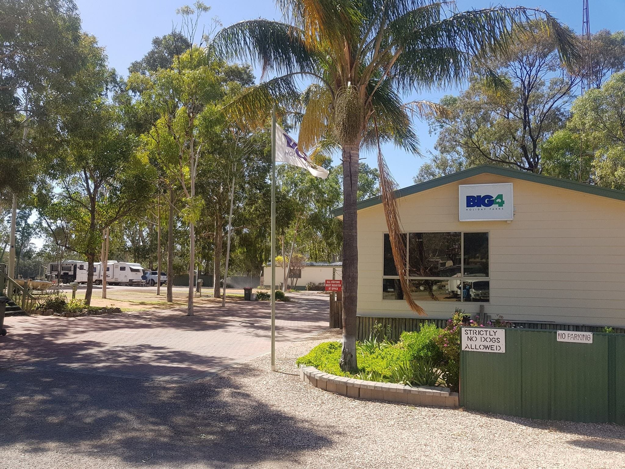 Big4 Blanchetown Riverside Holiday Park - Accommodation Mount Tamborine