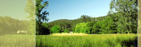Waterholes Guest House - Accommodation Mount Tamborine