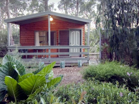 A Maze N Things Holiday Park - Accommodation Mount Tamborine