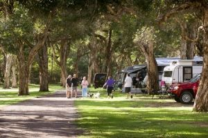 Beachfront Holiday Park - Accommodation Mount Tamborine