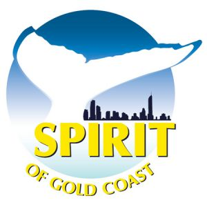 Spirit of Gold Coast Whale Watching - Accommodation Mount Tamborine