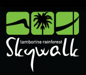 Rainforest Skywalk - Accommodation Mount Tamborine