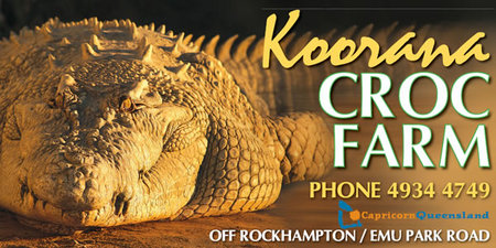 Koorana Saltwater Crocodile Farm - Accommodation Mount Tamborine