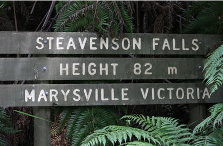 Stevensons Falls - Accommodation Mount Tamborine