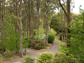 Mount Lofty Botanic Garden - Accommodation Mount Tamborine
