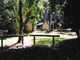 Wirrabara Forest Reserve - Accommodation Mount Tamborine