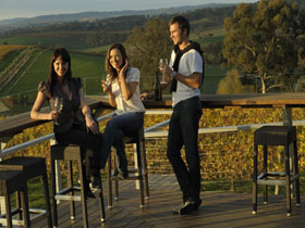 The Lane Vineyard - Accommodation Mount Tamborine