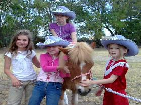 Amberainbow Pony Rides - Accommodation Mount Tamborine