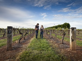 Coonawarra Wineries Walking Trail - Accommodation Mount Tamborine