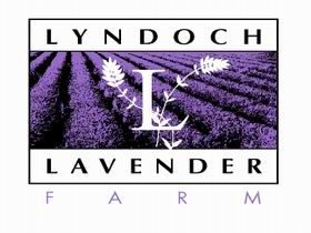 Lyndoch Lavender Farm and Cafe - Accommodation Mount Tamborine