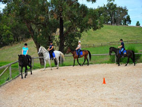 Megan Jones Riding School and Trail Rides - Accommodation Mount Tamborine
