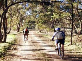 Bike About Mountain Bike Tours And Hire - Accommodation Mount Tamborine