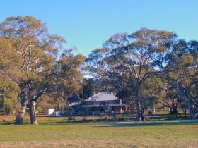 Old Wilpena Station - Accommodation Mount Tamborine