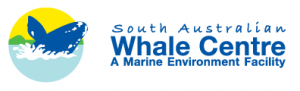 South Australian Whale Centre - Accommodation Mount Tamborine