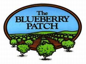 The Blueberry Patch - Accommodation Mount Tamborine