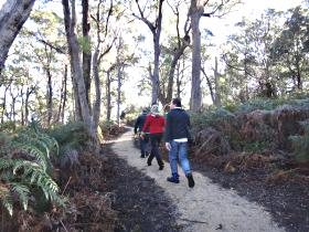 Bridport Walking Track - Accommodation Mount Tamborine