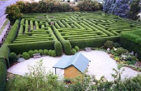 Westbury Maze and Tea Room - Accommodation Mount Tamborine