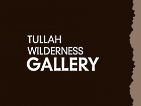Tullah Wilderness Gallery - Accommodation Mount Tamborine