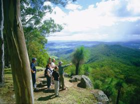 Gold Coast Hinterland Great Walk - Accommodation Mount Tamborine