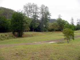 Brooyar State Forest - Accommodation Mount Tamborine