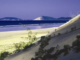 Cooloola Great Sandy National Park - Accommodation Mount Tamborine