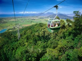 Skyrail Rainforest Cableway - Accommodation Mount Tamborine
