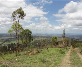 City View Camping and 4WD Park - Accommodation Mount Tamborine